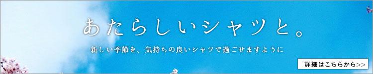春の新作ニットシャツ/ ニットシャツ専門店ITOHARI